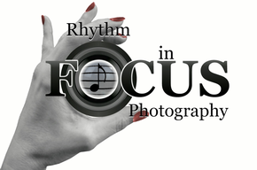 Rhythm In Focus Photography
